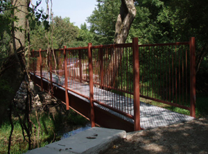 Walking Bridge 1
